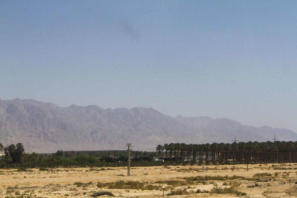 Eilat-may-2017-00063.jpg