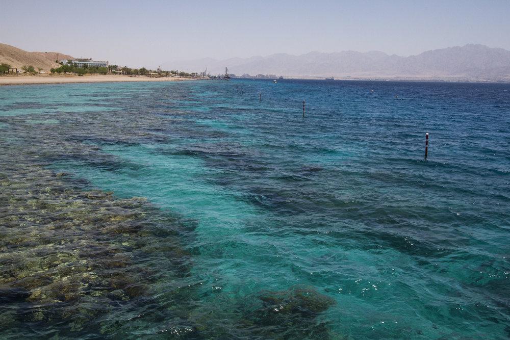 Eilat-may-2017-00116.jpg