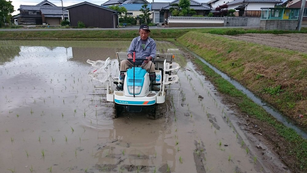 """Back in the day they used to pant the rice by hand, but now everyone in Japan uses this special tractor"""