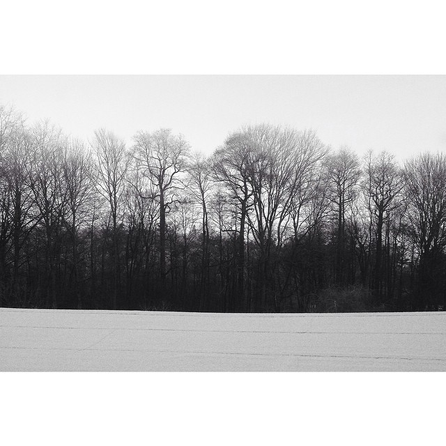 Only a #whisper #flatline #landscape #germany #monochrome #woods