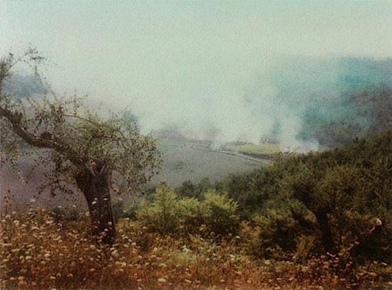 tamamenfransiz: Tarkovsky's Polaroids