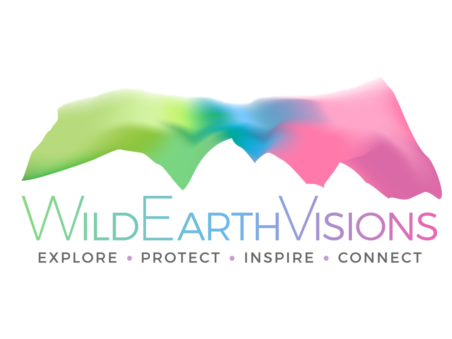 WildEarthVisions
