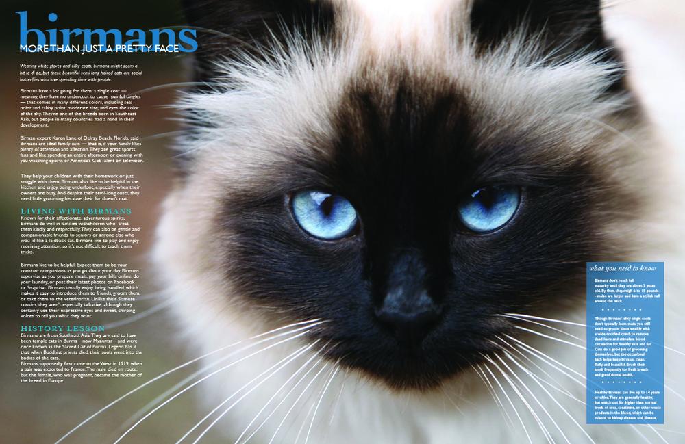 jbohnlein-magazinev3pg24.jpg