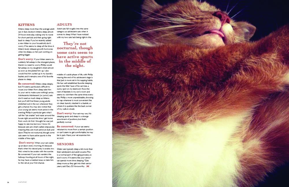 jbohnlein-magazinev3pg28.jpg