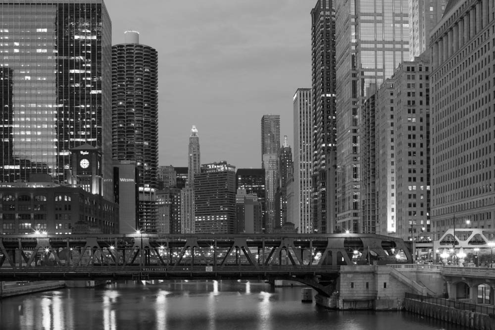 ChicagoSkyline-IMG_1693 2.jpg