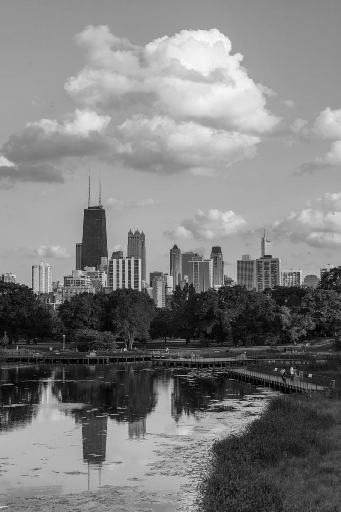 LincolnPark-IMG_7168 2.jpg