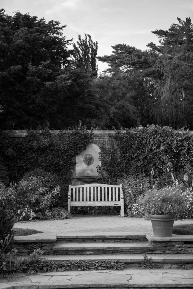 garden-IMG_5897 2.jpg