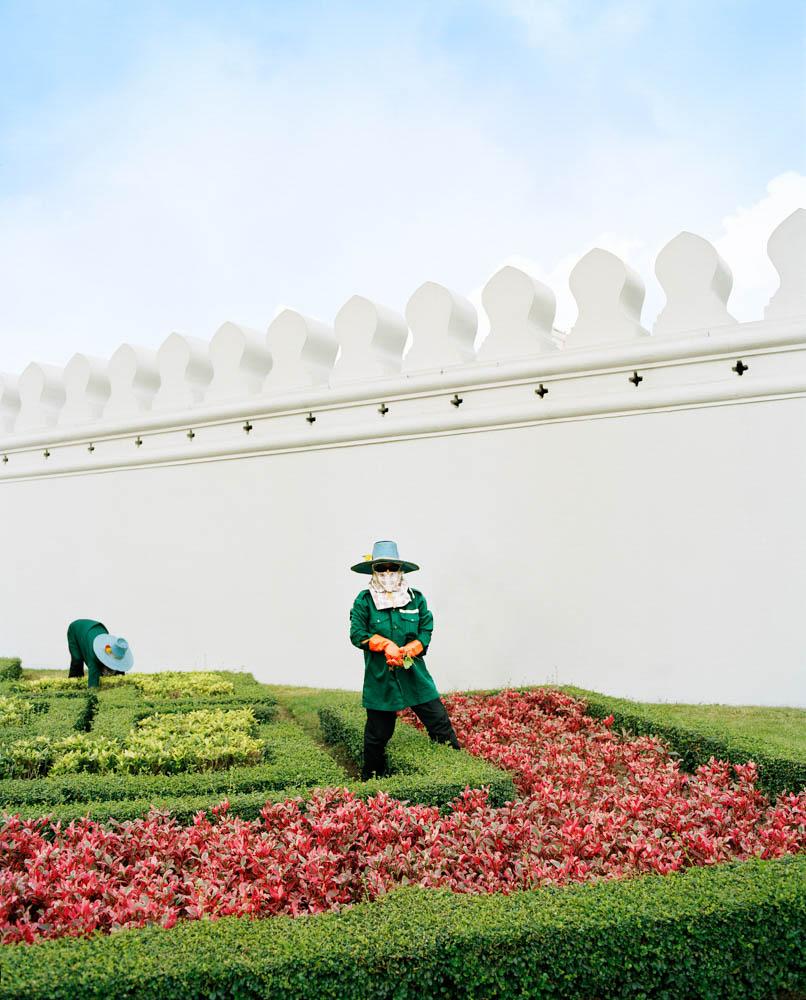 Palace Gardener