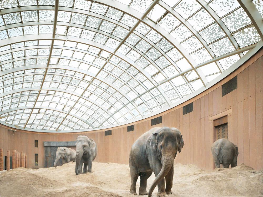 Elephant House, Copenhagen, Denmark