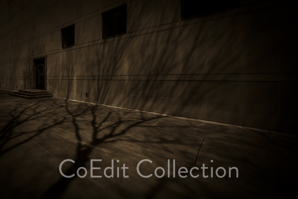 CoEdit-0043