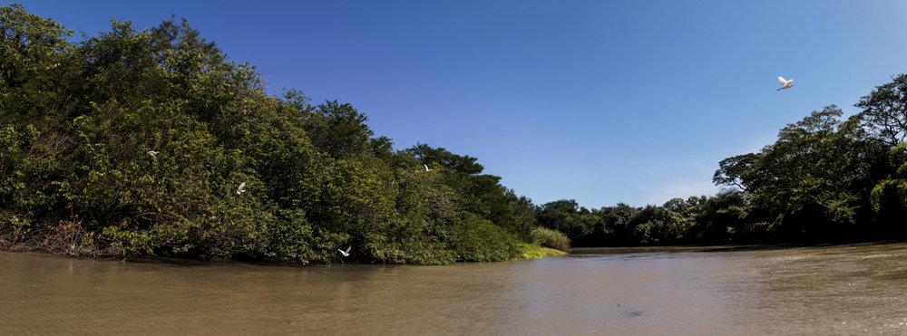 Costa-Rica-L1007523-P.jpg