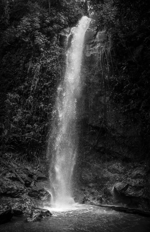 Costa-Rica-L1007924-P.jpg