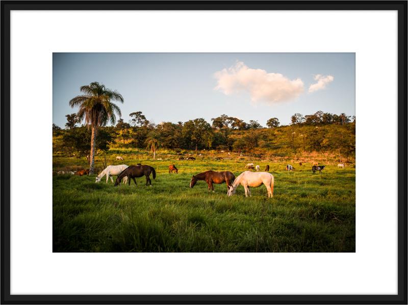 Costa-Rica-L1008188-B.jpg