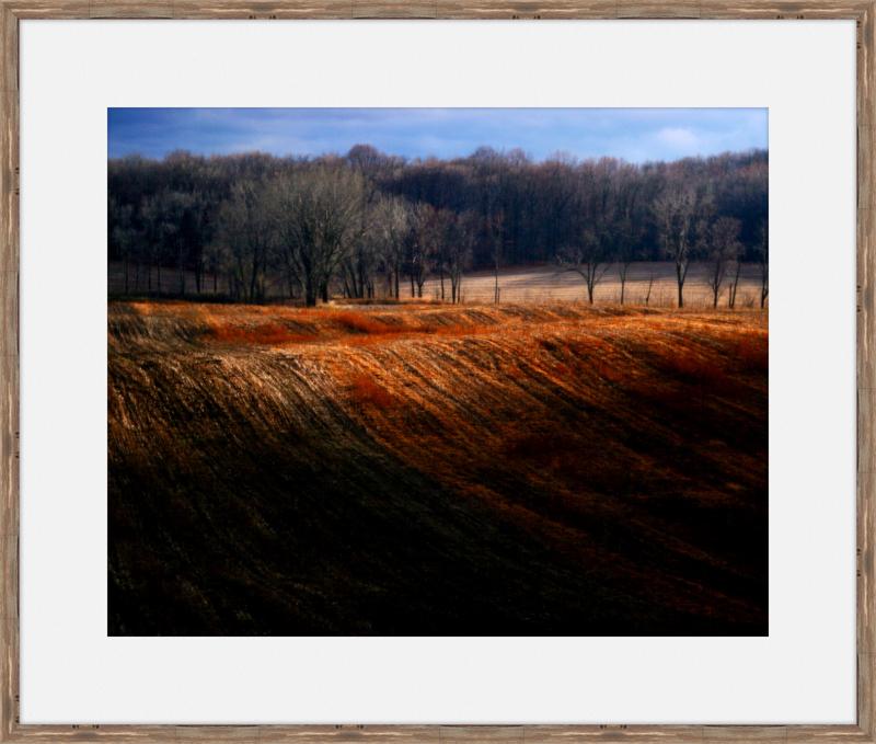 Landscape-Wood.jpg