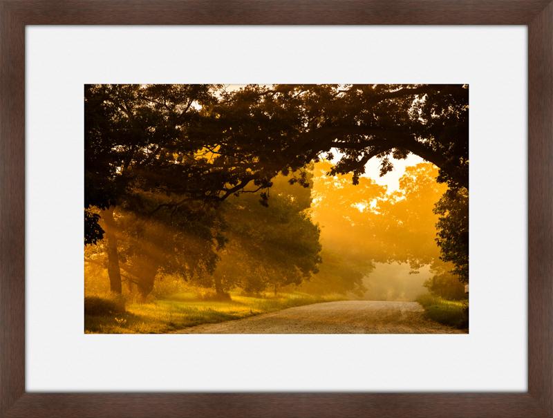Sunrise-Driveway.jpg