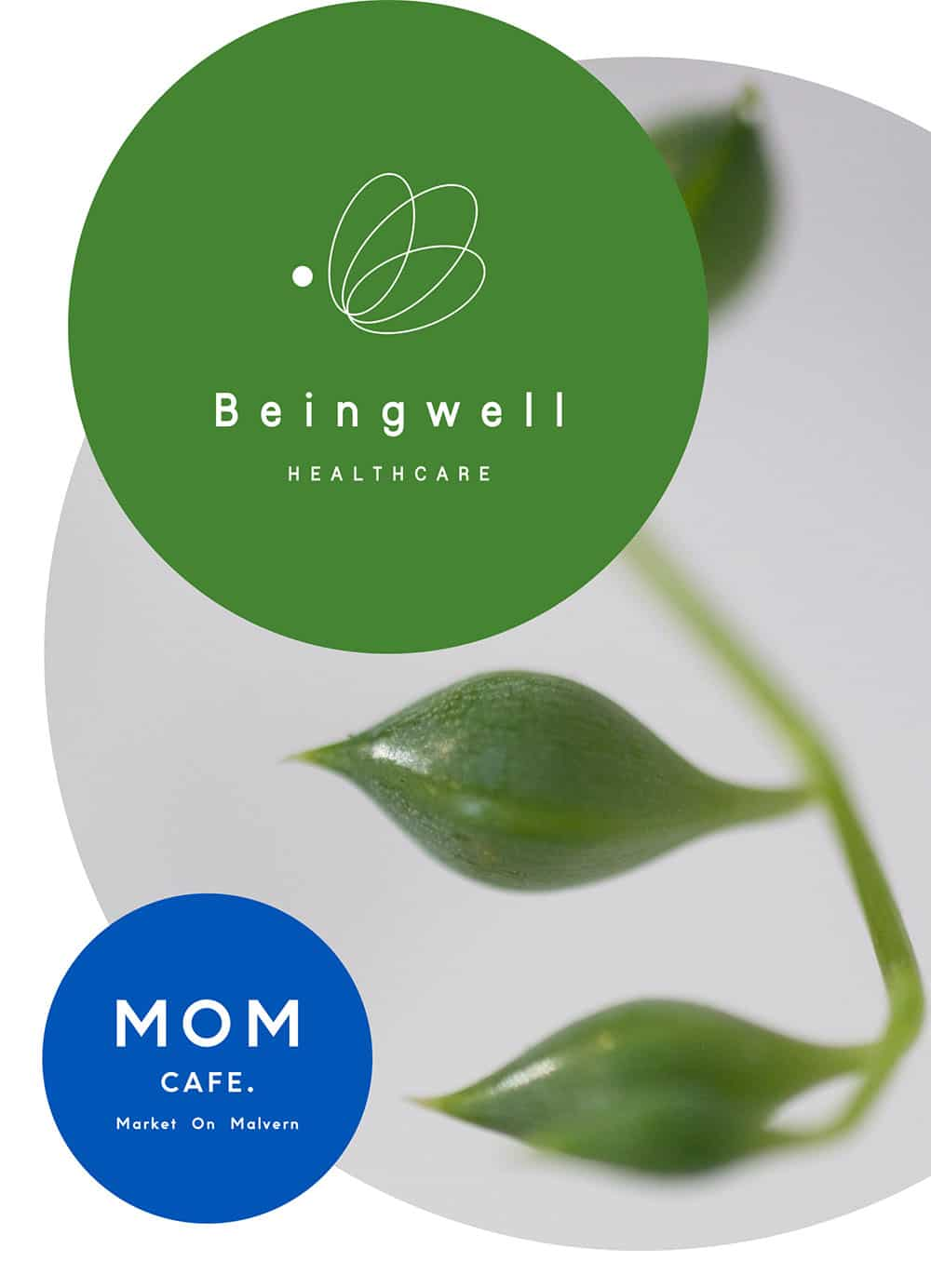 BEINGWELL HEALTHCARE