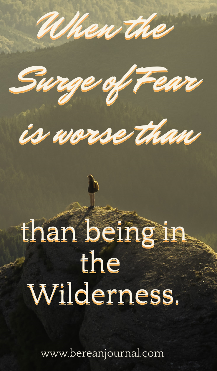 Phobias of the unknown are mixed with massive fear and anxiety. These are something multiple Bible Verses remind us that it doesn't help. Yet, I feel into the trap. I know scripture reminds us that worry and fear will only take away from today. So join me as I tell you about how the fear of the wilderness is actually worse than then being there.
