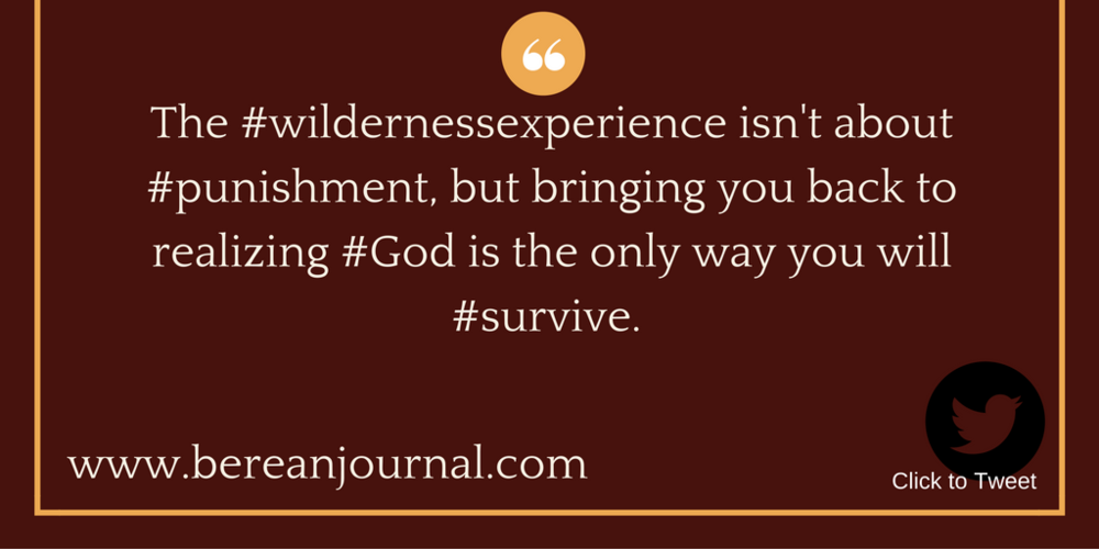 The #wildernessexperience isn't about #punishment, but bringing you back to realizing #God is the only way you will #survive