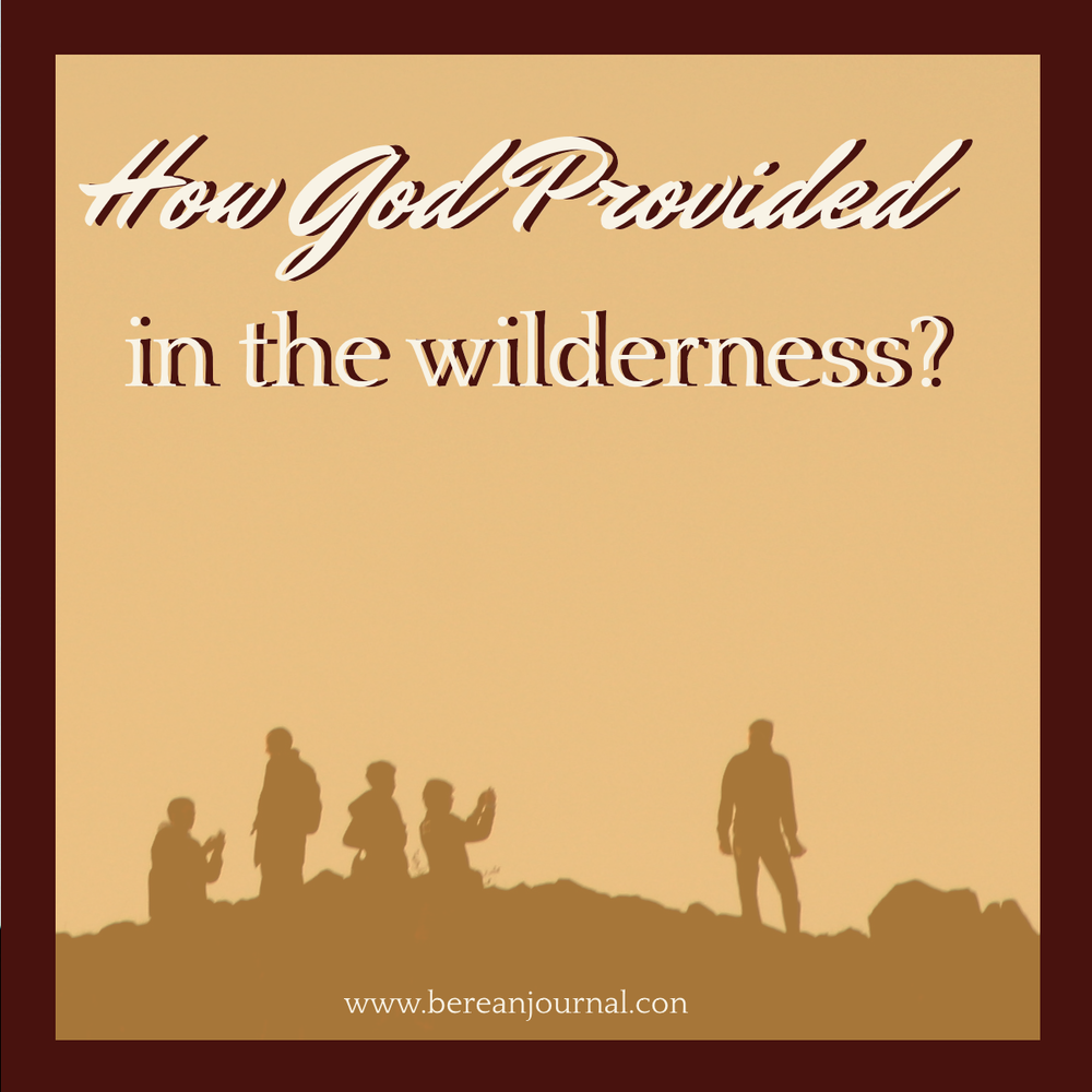 While in the desert wilderness or valley, sometimes it feels like God doesn't care. I've been there, but I know that God provides. I ask you to join me in studying Bible Verses about how God provided for the Israelites. The truth is that they may have lacked faith in their life, but still God provided for them.  Join me with your Bible Study questions.