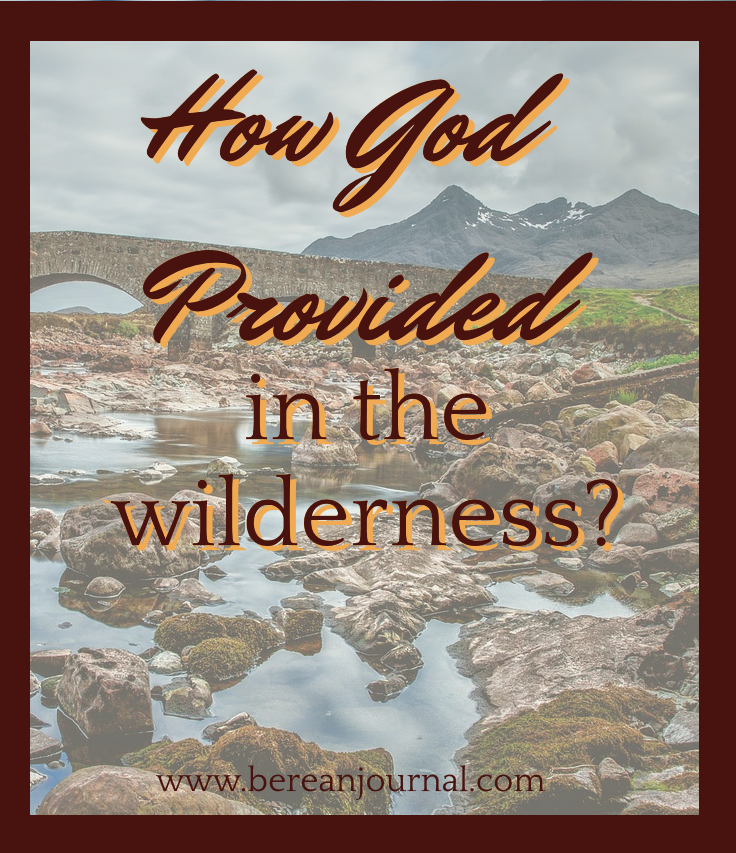 While in the desert wilderness or valley, sometimes it feels like God doesn't care. I've been there, but I know that God provides. I ask you to join me in studying Bible Verses about how God provided for the Israelites. The truth is that they may have lacked faith in their life, but still God provided for them.  Join me on the blog or on facebook with your Bible Study questions. https://www.facebook.com/BereanJournal