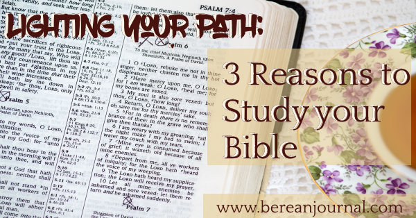 Bible Study should be an important part of your relationship with Christ. Here are 3 reasons Bible Study is important. | www.bereanjournal.com | www.instagram.com/bereanjournal