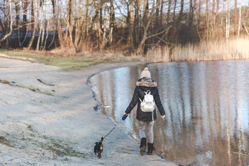 Sama-Dog-Lake-Dog