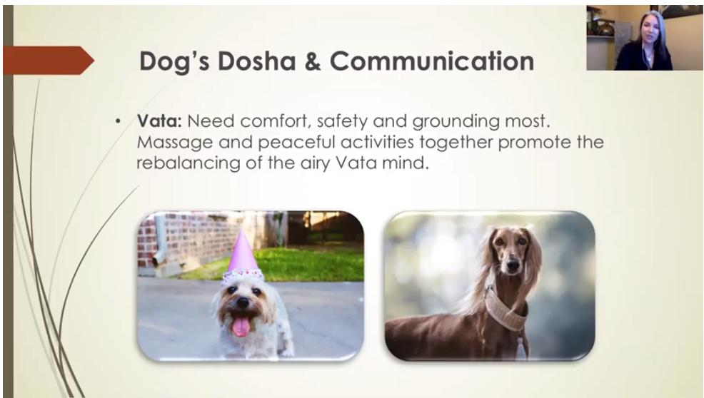 TWD Zoom Screenshot Doshas - Vata.png