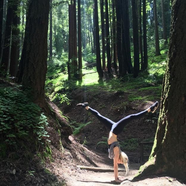 Playing around with the giant coastal redwoods inSanta Cruz, CA