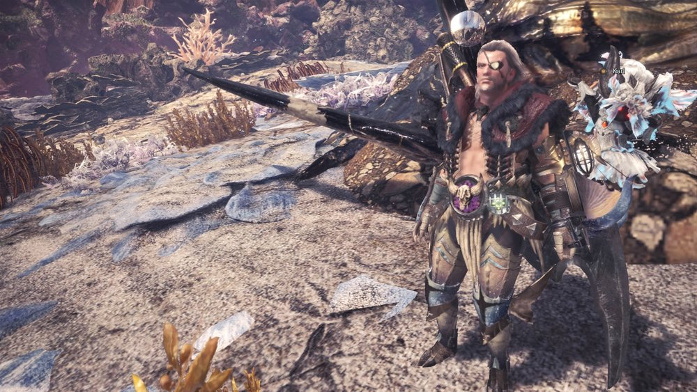 Monster Hunter_ World_20180306222013.jpg