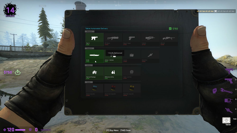 CS:GO buy menu.