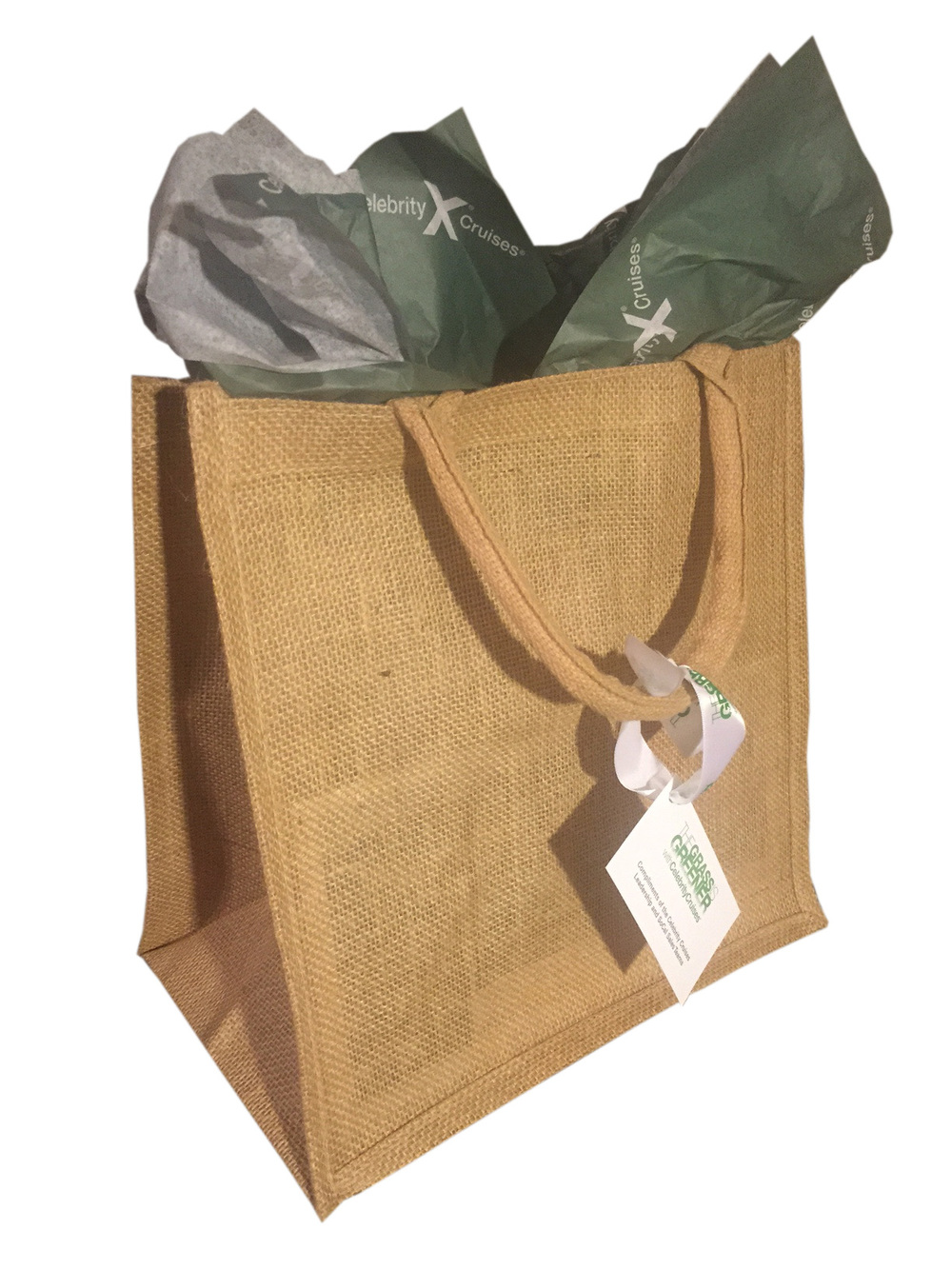 GIG Gift Bag copy.jpg