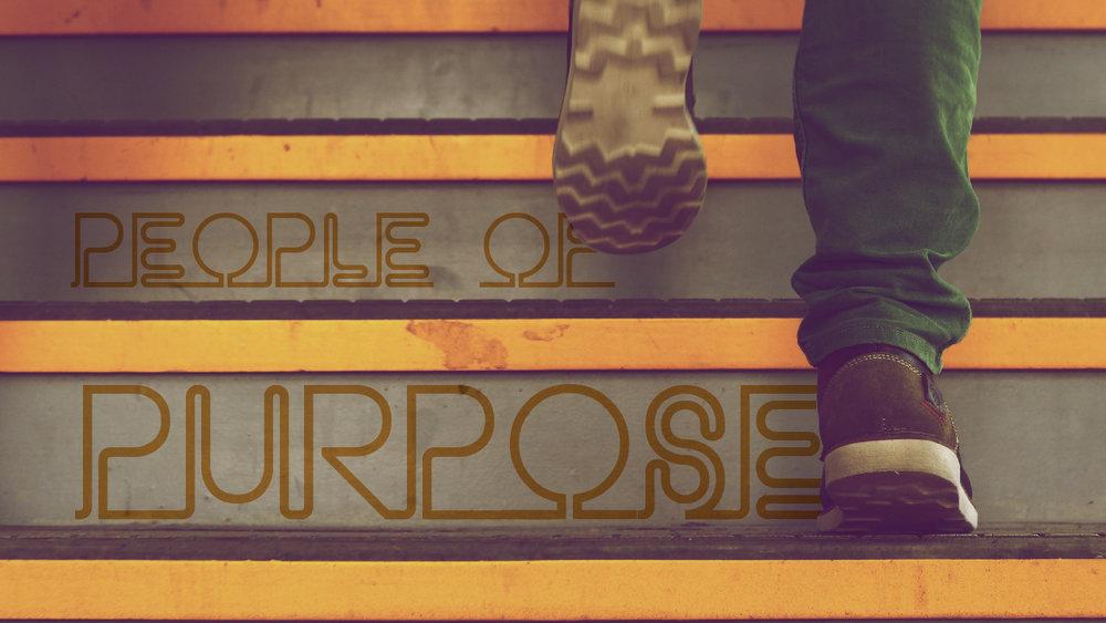 purpose-01.jpg