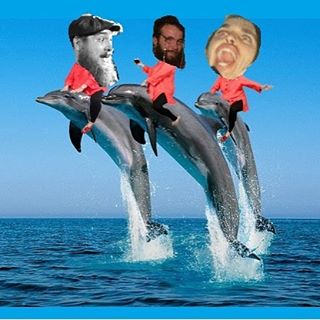 VERY REAL PHOTO ALERT!! Attention Bunbury mates, this Saturday night we play a gig for you and your dolphins on the lawn of the dolphin discovery centre! #dolphinshow