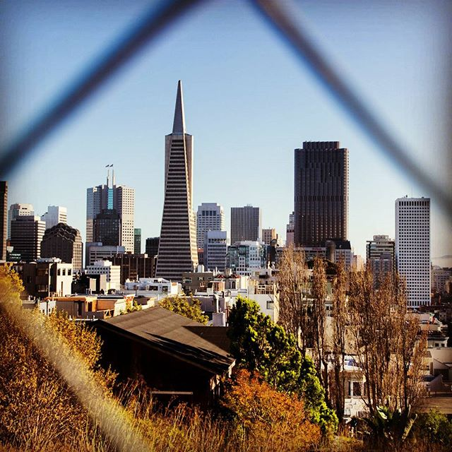 #sanfrancisco #skyline #travel #city #latergram