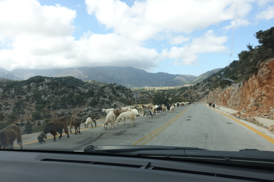 Samaria Gorge 1.jpg