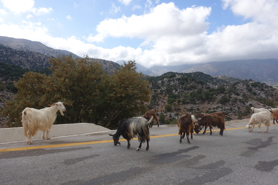 Samaria Gorge 2.jpg