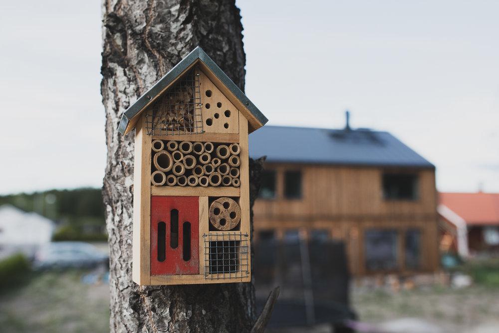 Några insektsholkar har vi också satt upp, ska vara bra för att hålla ohyra borta från odlingarna.