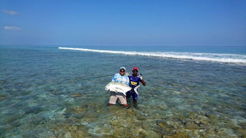 gamefishing fluefiskeri: giant trevally