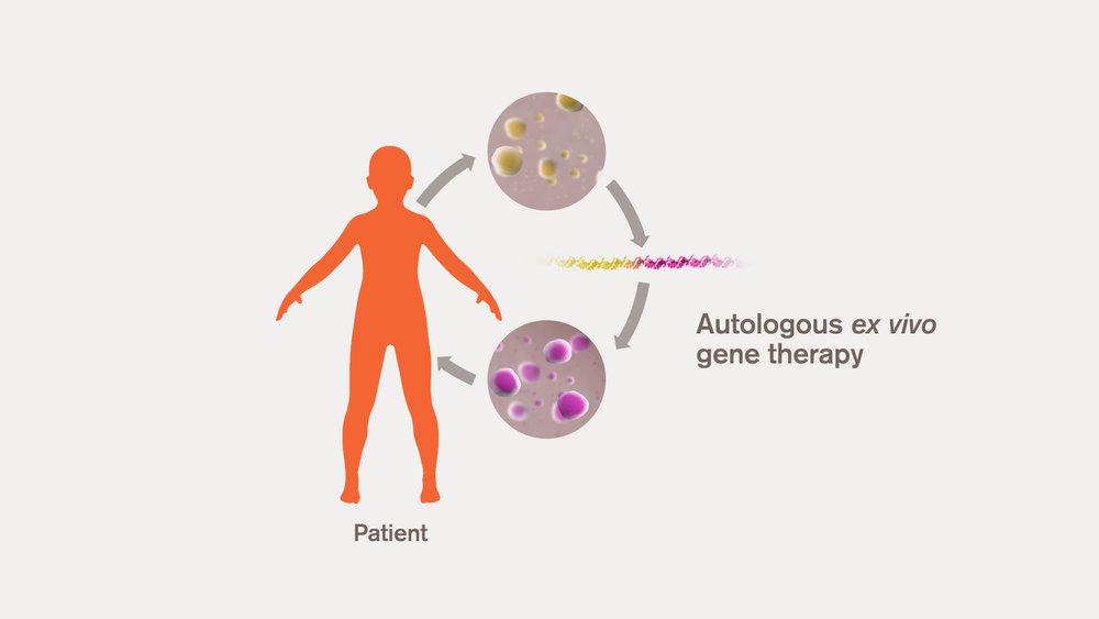 Gene therapy process diagram.jpg