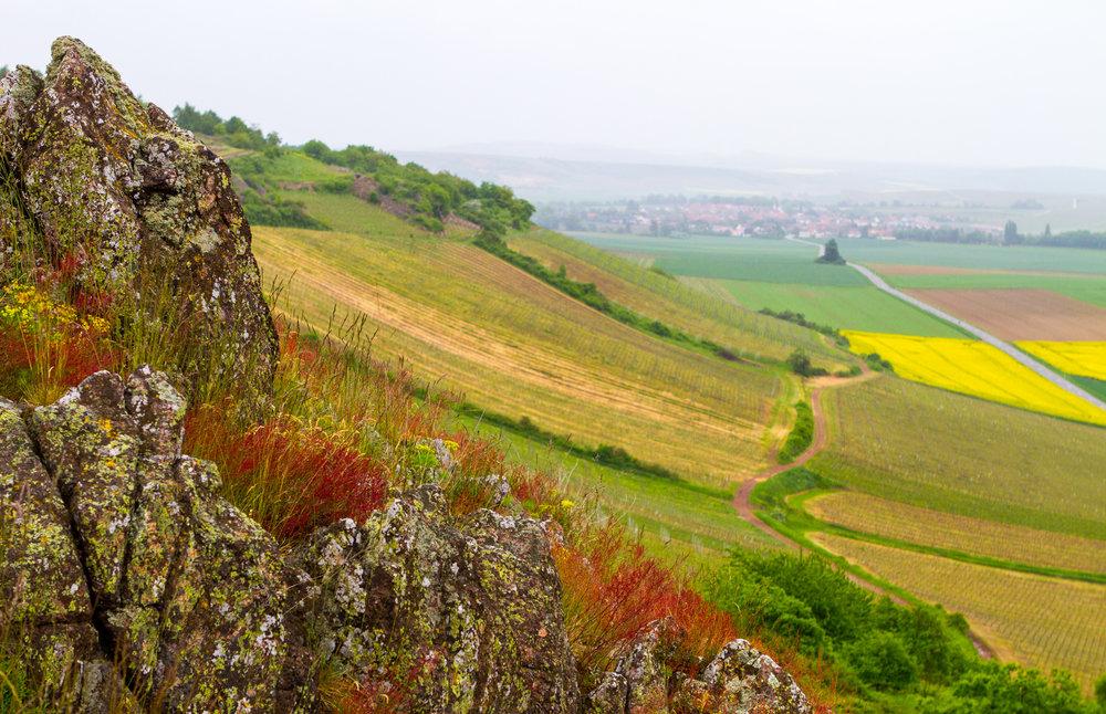 Dette er vinmarken Heerkretz.