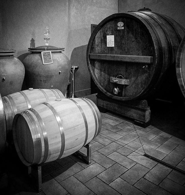 Litt av hvert av lagringsbeholdere hos Massolino. Deres eldste botte «Bestemor» øverst til høyre, barrique og amfora! 🍷 #massolino #nebbiolo #serralungadalba #barolo #enotriavin @vinforum.no