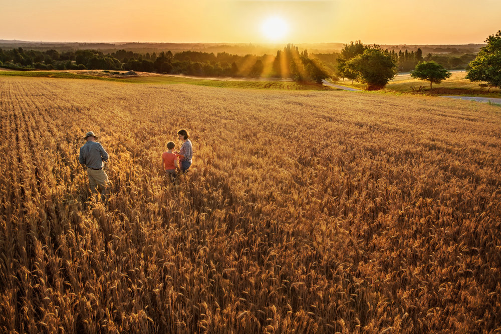 Maryland Farmer and family walking through field