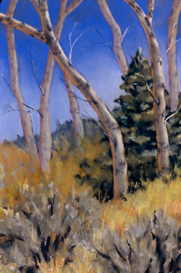 Big Hole Aspen     Pastel     Private Collection