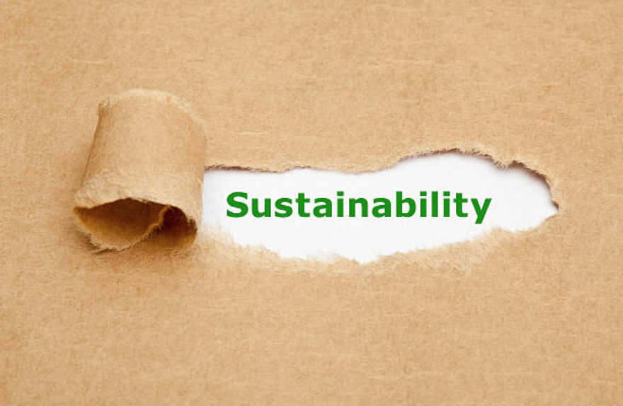 Sustainability-Report.png