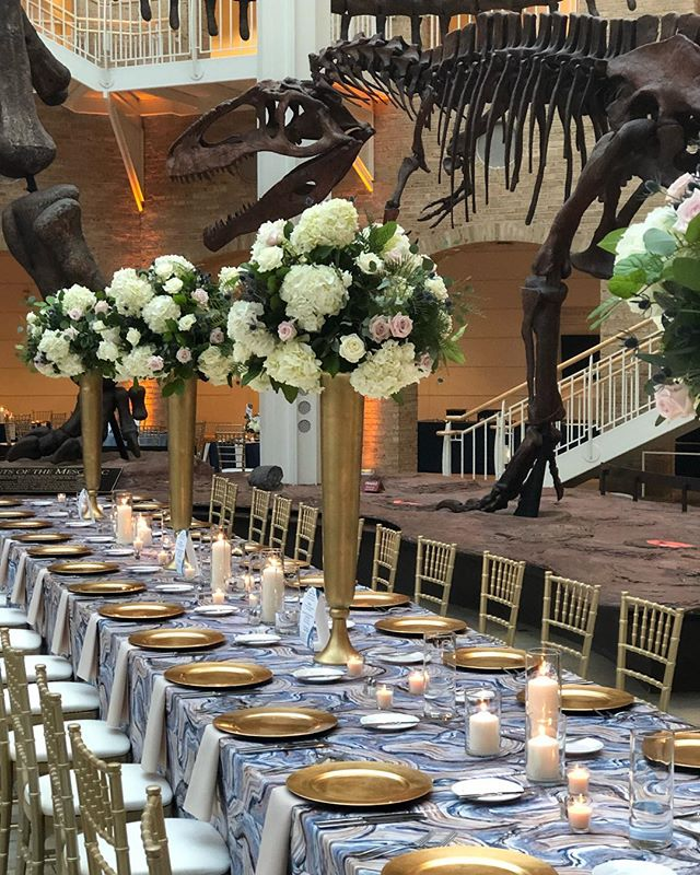 Dinner with the Dinos! A beautiful night @fernbankmuseum put together by @ellenthomasevents ! #atlantawedding #thatlinentho #prettyperfect