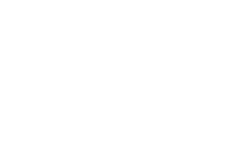 Digital Leadership Summit #5  18.6.2020
