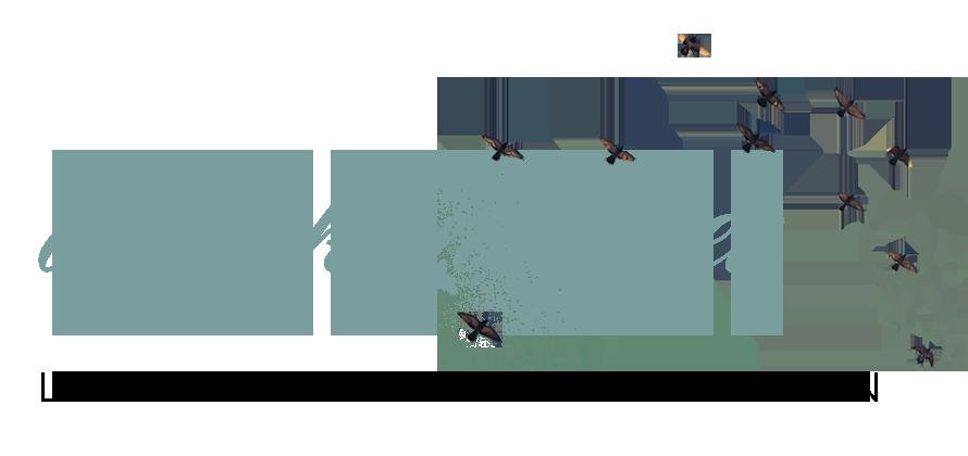 amy_kunberger_logo.png