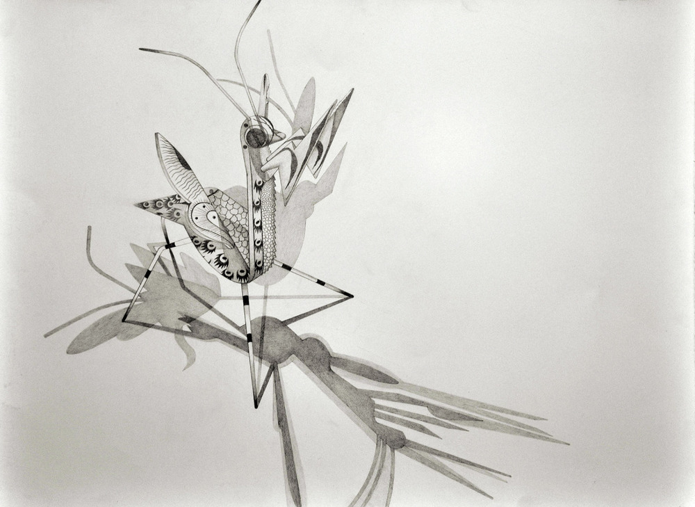 "Spirit Animal- Dragonfly   Graphite on Paper  22"" x 30"" 2012"