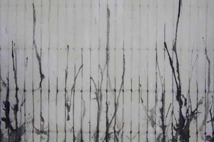 Regeneration IV (Detail)   Ink, Graphite, thread and wax on paper   22' x 22'' 2012