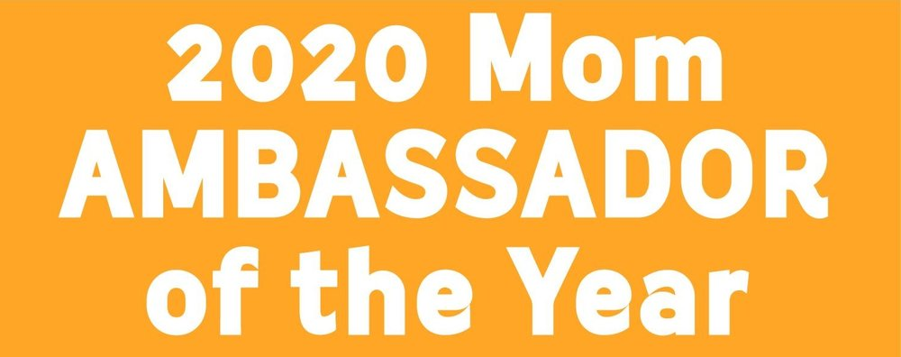 Ambassador of the Yr 2017Logo-FB.jpg